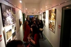 Ausstellung WORKING ART im Rathaus Rinteln
