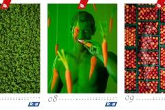 Kalender K+S KALI