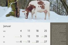 01_Januar_MASTERRIND-Kalender2016