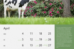 04_April-neu_MASTERRIND-Kalender2016