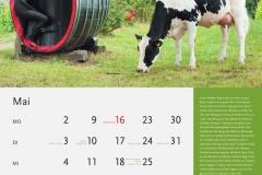 05_Mai_MASTERRIND-Kalender2016