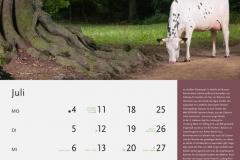 07_Juli-neu_MASTERRIND-Kalender2016