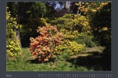 Monatsblatt MAI Kalender BODYPAINTING IN NATURE 2021