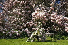 Living Nature: Magnolienbaum Bodypainting mit Model Daniela im Gutspark. Hasperde, 19.04.2015 - Body Paint Künstler: Jörg Düsterwald