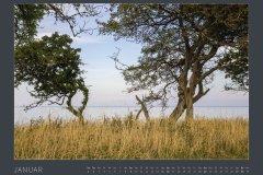 Kalender NATURE ART - BODYPAINTING IN NATURE 2022 - Januar