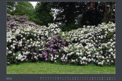 Kalender NATURE ART - BODYPAINTING IN NATURE 2022 - Mai