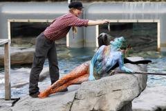 WORKING ART - Tierpflegerin / Bodypainting meets Business