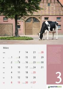 03_März-neu_MASTERRIND-Kalender2016