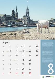 08_August_MASTERRIND-Kalender2016