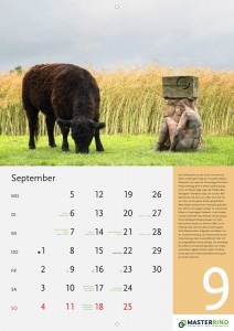 09_September-neu_MASTERRIND-Kalender2016