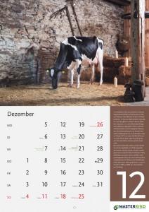 12_Dezember_MASTERRIND-Kalender2016