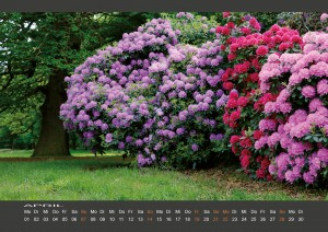 Wandkalender_BODYPAINTING_IN_NATURE_April_2019