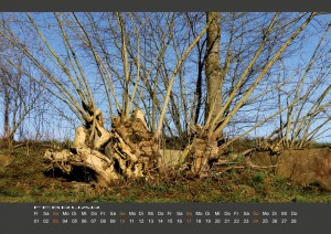 Wandkalender_BODYPAINTING_IN_NATURE_Februar_2019